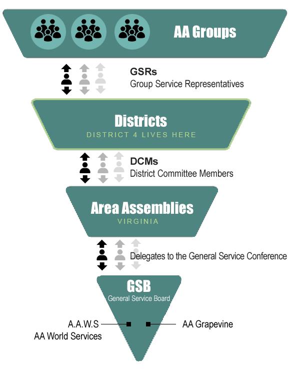 AA Organization Pyramid